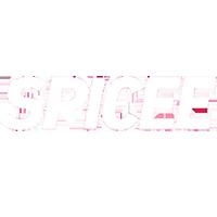 spicee logo carre blanc